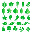 growing plants leaf and grass shoots vector image