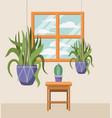 houseplants in macrame hangers with window vector image vector image