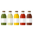 juice in a glass bottle vector image vector image