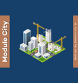 module isometric city of houses vector image vector image