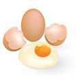one whole and one cracked egg vector image vector image