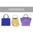set of varied handbags color vector image vector image