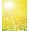 spring vector image vector image