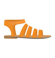 summer woman sandal icon flat style vector image