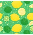 Lemons and Limes Seamless Pattern vector image