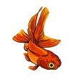 Artstic fish sketch vector image vector image