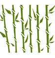 bamboo forest set nature japan china plant vector image vector image
