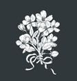 blooming tree hand drawn botanical blossom vector image vector image