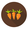 Carrots Vegetables Circle Icon with long Shadow vector image vector image
