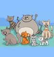 cats and kittens group cartoon vector image vector image