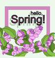 hello spring pink vector image