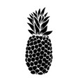 pineapple in engraving style design element for vector image vector image