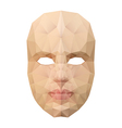 Polygonal face mask vector image