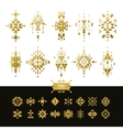 Tribal elements gold colors vector image