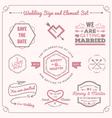 Wedding celebration badge and sign decoration vector image