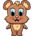 baby bear smiling vector image vector image