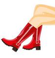 feminine legs in boot vector image vector image