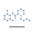 levobupivacaine local anaesthetic vector image