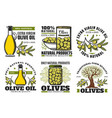 premium quality farm olive oil and food products vector image vector image