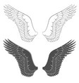 set black and white with wings vector image