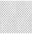 snake skin black and white seamless pattern vector image