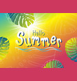 summer banner design monstera tropical leaves vector image