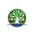 tree of life healing center vector image