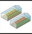 big transparent greenhouses with vegetables beds vector image