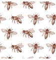 honey bee seamless pattern vintage doodle sketch vector image