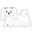 Maltese Dog vector image vector image