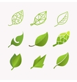 Set images of leaves vector image