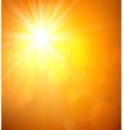 Summer view blurry orange sky background vector image vector image