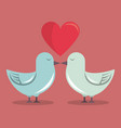 color background with heart and couple of pigeons vector image
