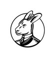 kangaroo wearing business suit circle woodcut vector image vector image