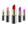 lipstick design vector image vector image
