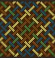 seamless knitted wool irish-saxon ornament vector image
