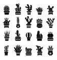 silhouette desert plants monochrome vector image