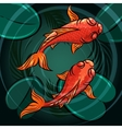 The Fishes vector image