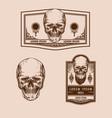vintage skull premium set vector image