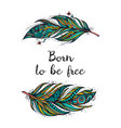 born to be free bright feather vector image