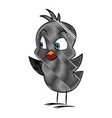 cartoon little chicken bird farm animal image vector image