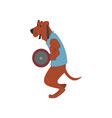 dog exercising with barbell funny sportive wild vector image vector image