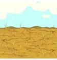 dried field rice