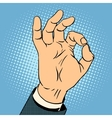 Okay gesture vector image vector image
