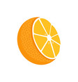 orange fruit whole and half vector image
