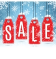 Sale price tags on winter background vector image