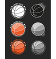 Set of basketballs on a gray background vector image