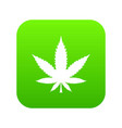 cannabis leaf icon digital green vector image vector image