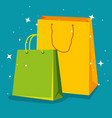 fashion sale bags to special offer vector image vector image
