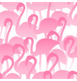 flamingo seamless pattern tropical exotic vector image vector image